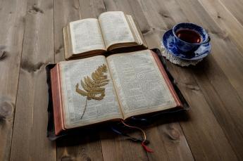 dos-biblias-y-tazas-abiertas-de-té-76095111